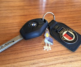 alpina key